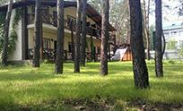 Гостевой дом Розмарин в Святогорске